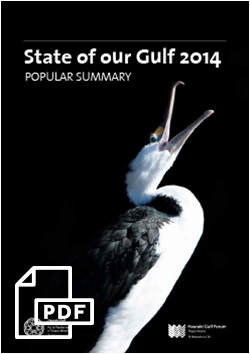 STATE OF THE GULF 2014: POPULAR SUMMARY