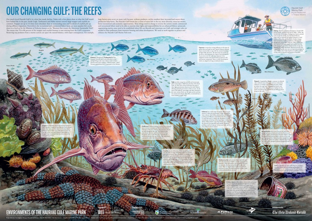 The Reefs