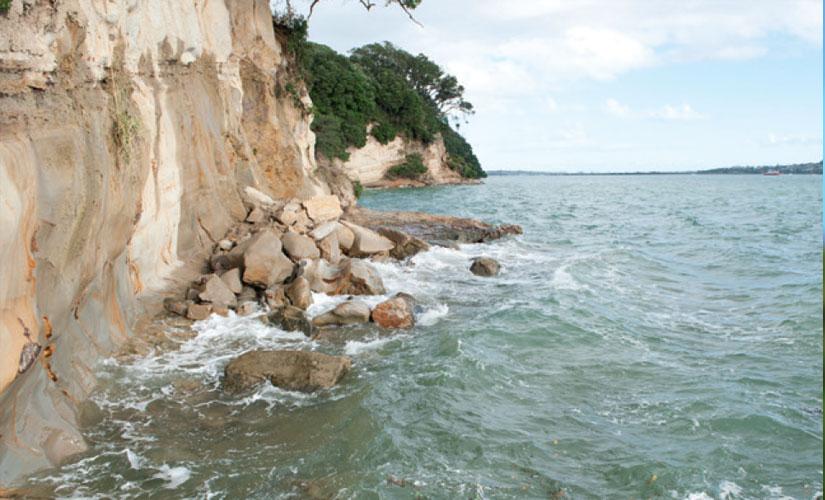 Ngai Tai associated with Te Naupata/ Musick Point