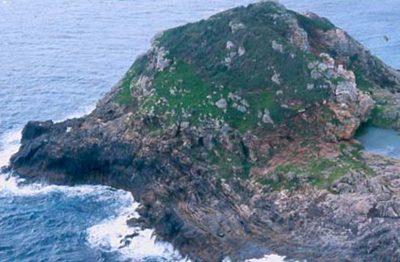Tatapihi, Groper I 1994