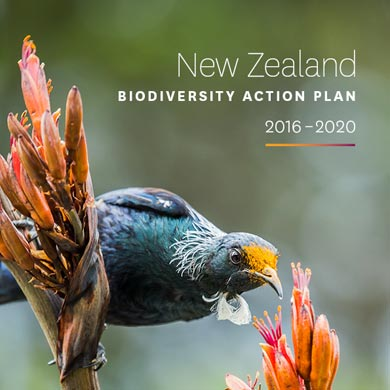 The new zealand biodiversity strategy our chance to turn the tide