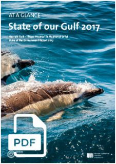 STATE OF THE GULF 2017: AT A GLANCE