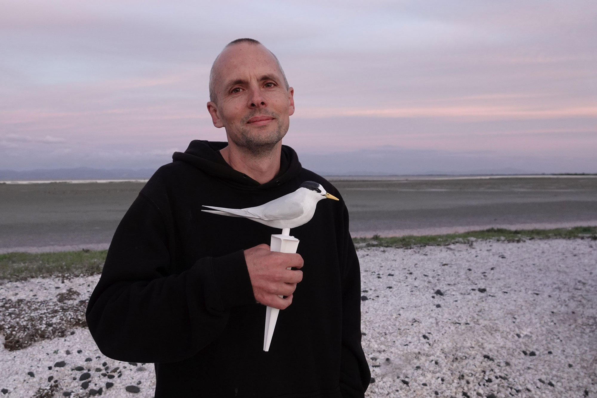 Shaun Lee with NZ fairy tern decoy