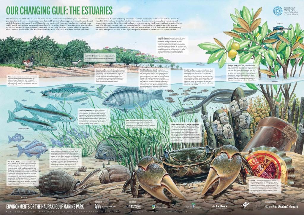 The Estuaries