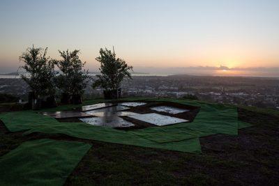 Trees await historic planting on Maungakiekie