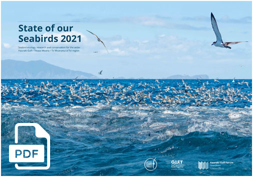 STATE OF THE GULF 2020: FULL REPORT